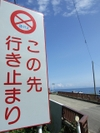 2007_0913216_2
